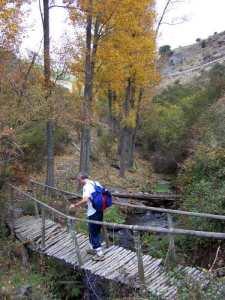 Viejo puente sobre arroyo Palancón