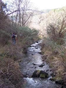 Rio Nacimiento