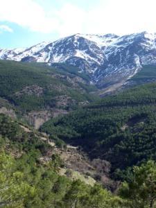 Valle del arroyo Ubeire