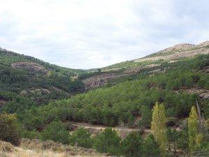 Al inicio de la ruta del Cerro de la Yedra