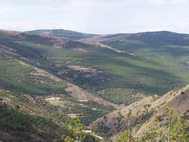 Rodeando Cerro de la Yedra