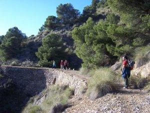 Puente Barranco Los Cazadores