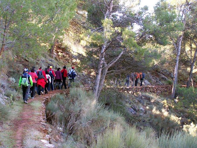 Senda Forestal Aljibe del Arco - Castala