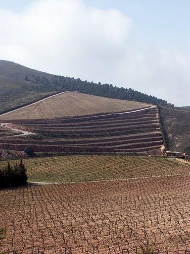 Bodegas Ánfora