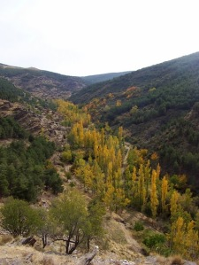 Barranco de las Morcillas