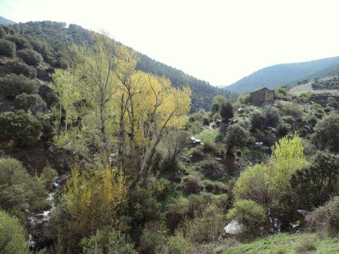 Cruce del Arroyo de Ubeire con el del Rosal
