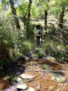 Cruzando el Río Chico