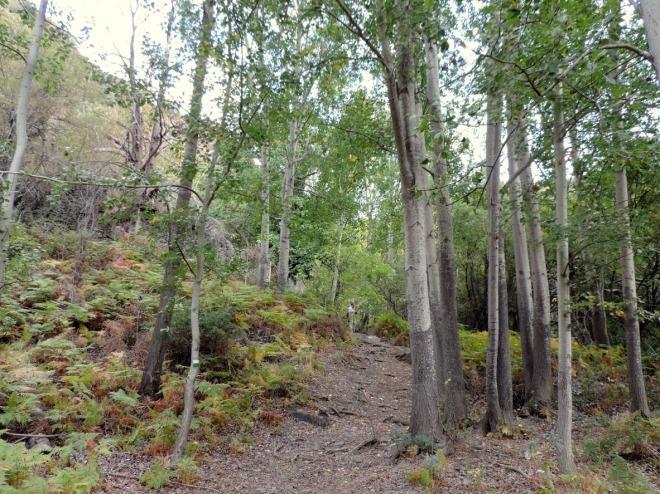 Valle de La Ragua