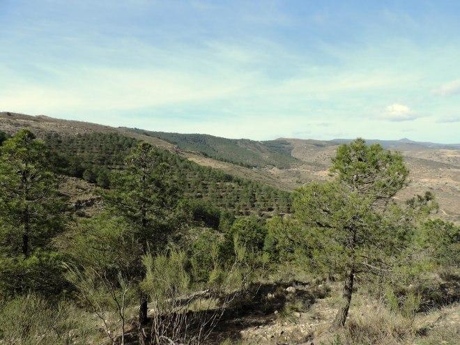 Cara norte Sierra los Filabres