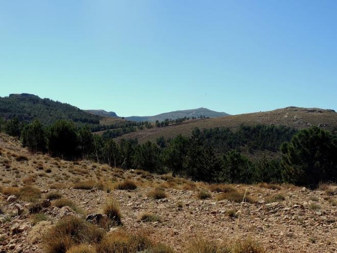 Cerro del Pocico