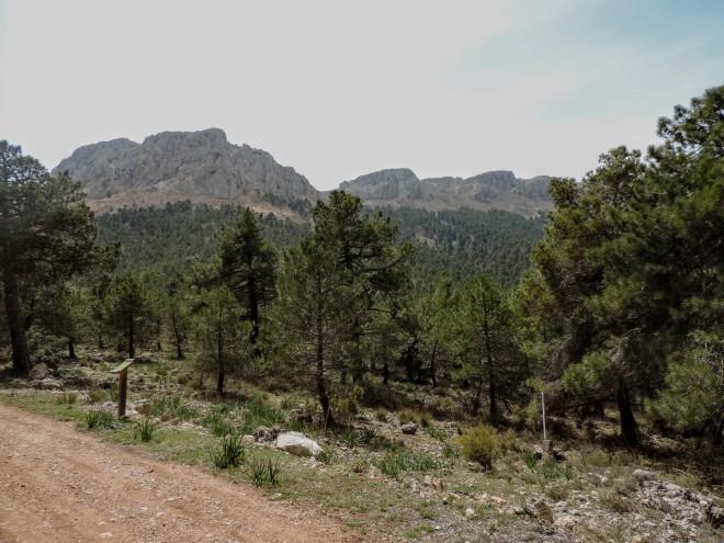 Cumbres de la Sierra de María