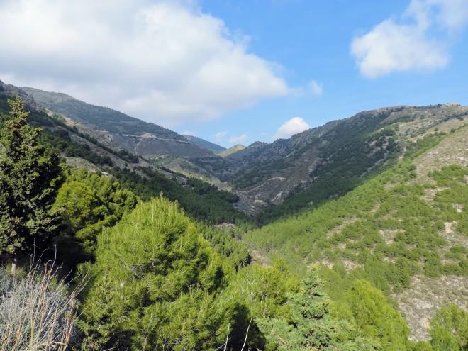 Vista hacia el norte del Barranco del Tartell
