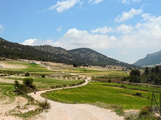 La ruta atravesando la Hoya de Taibena